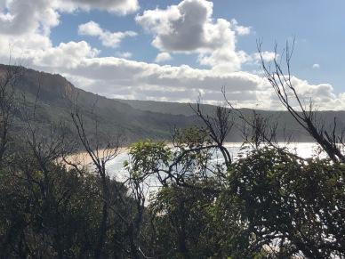 Gorgeous views through the bush MG_6920