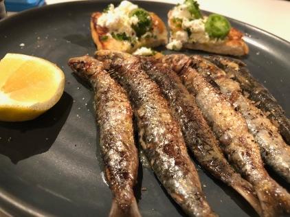 Sardines IMG_6948